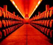 vinos Huesca 2